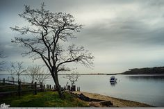 """Picture-A-Day (PAD n.2118) """"Possible"""" ~Amy, DangRabbit Photography North Shore, Long Island, NY"""