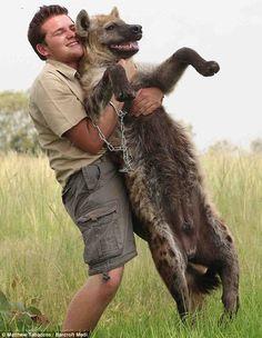 Shandor Larenty with Hyena
