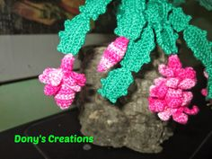 FREE PATTERN ~ C ~ Dony's Creations: Christmas Cactus _ pattern free Italian