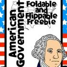 This is a fun little set of foldables to help you teach American government to you kiddoes. The set contains ten different foldables that can be in...