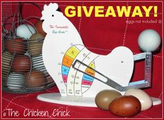 The Incredible Egg Scale Giveaway Chicken Incubator, Egg Incubator, Pet Chickens, Chickens Backyard, Incubating Chicken Eggs, What Is A Blog, Incredible Eggs, Chicken Chick, Kinds Of Birds