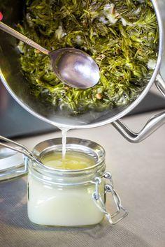 Punch Bowls, Herbalism, Syrup, Herbal Medicine