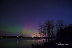 Northern Lights by Carrie Bayless