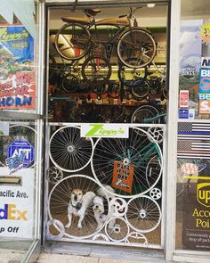 Dog gate made of bike parts? Yes please.