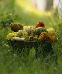 Pujoliivi: Väripatojen äärellä Plant Painting, Yarn Inspiration, Ribbon Art, Pattern Art, Fiber, Crafty, Wool, Knitting, Natural Dyeing