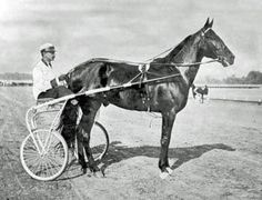 Dan Patch— the legendary Standardbred pacer that broke a world record in 1906 with his one-minute-55-second mile— could be greeting Minnesota State Fairgoers next summer.
