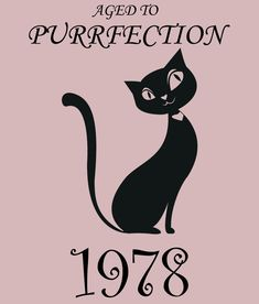 Aged to Purrfection - 1978, Women's 40th Birthday T Shirt