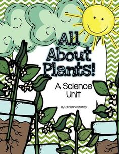 This is a fun-filled unit packed with activities about plants! Students will learn about what living things, seeds, what plants need, and the parts of a plant. Please let me know if you have any questions. Enjoy!  What's Included: * 9 vocabulary cards with definitions  Living & Non Living Things *  Living or Not Living Cut & Paste Sort * Living Things Coloring Sheet * Plants vs.