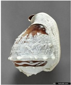 Carving on shell