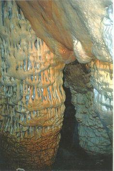 Κάρπαθος: Bορειοανατολικά της Αχάτας στη θέση «(Σ)κιφτά», όχι μακριά της θάλασσας, σε απόκρημνη ακτογραμμή της ευρύτερης περιοχής «Δεντρολά» του Απερίου, βρίσκεται ένας σπάνιος Σπηλαιολογικός θησαυρός που η Φύση προνομιακά προίκισε το ... Διαβάστε Περισσότερα