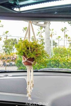 Want simple ways to hang your pretty plants at home? Here are 3 simple steps to make your plants look beautiful in less than 15 minutes! Indoor Gardening, Indoor Plants, Lipstick Plant, Natural Air Purifier, Cactus Care, House Plant Care, Home Organization Hacks, Gardening For Beginners, Hanging Planters