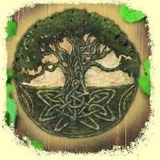 "yggdrasil -   In Norse mythology, Yggdrasil (""The Terrible One's Horse""), also called the World Tree, is the giant ash tree that links and shelters all the worlds. Beneath the three roots the realms of Asgard, Jotunheim, and Niflheim are located. Three wells lie at its base: the Well of Wisdom (Mímisbrunnr), guarded by Mimir; the Well of Fate (Urdarbrunnr), guarded by the Norns; and the Hvergelmir (Roaring Kettle), the source of many rivers."