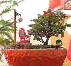 Your Miniature Garden Shop Christmas Garden, Christmas Minis, Miniature Christmas, Dish Garden, Garden Shop, Garden Club, Little Gardens, Miniature Fairy Gardens, Fall Diy