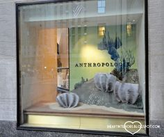 i heart interiors: Anthropologie Window Display - Under the Sea Extended Rockefeller Center Edition