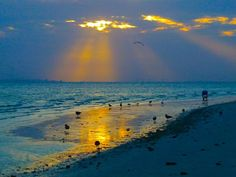 sanibel sunrise reflection - I've been to Sanibel Island twice & would do it again, if given the chance.