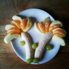 kraamfruit