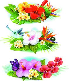 Flowers borders vector set 04