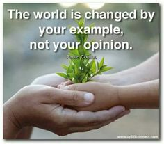 The world is changed by your example, not your opinion.