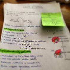 .The unit 2 psychology revision begins #psychology