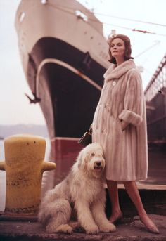 Virginia Thoren - model in Schiaparelli, new york harbor, Fur coat, Old English Sheepdog Vintage Fur, Mode Vintage, Vintage Glamour, Vintage Love, Vintage Beauty, Vintage Bridal, Vintage Colors, Retro Vintage, 1960s Fashion
