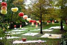 Picnic wedding - could do this right in our backyard!