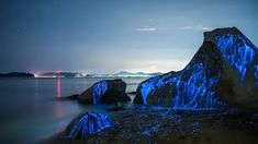 """archatlas: """" The Weeping Stones Photographed off the coast of Okayama, Japan, The Weeping Stones is a photo series by the creative duo Trevor Williams and Jonathan Galione of Tdub Photo that. Okayama, Kyushu, Costa, Japan Beach, Sea Of Stars, Photo Series, Natural Wonders, Japan Travel, Places To See"""