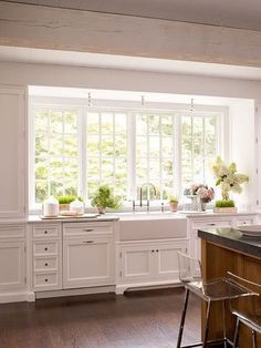 Sink projection, farmhouse porcelain?.... windows almost down to counter. Could do with one window and pen shelving on either side.