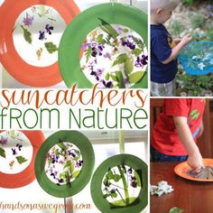 Nature Collage Suncatcher Craft for Toddlers