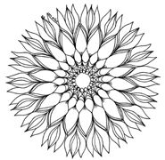 Mandala Coloring Pages.. a simple succulent. soo sketching one to hang like ASAP!