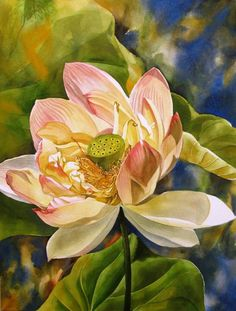 lotus in bloom, original transparent watercolor painting on arches rough paper, Botanical Illustration, Botanical Prints, Watercolour Painting, Watercolor Flowers, Watercolors, Lotus, Flower Art, Drawings, Artwork