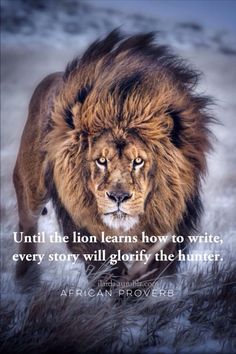 ilaida: African proverb