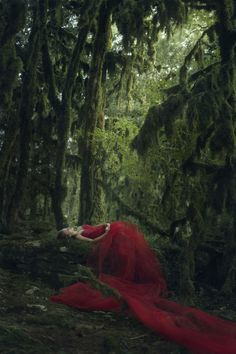 Untitled by Katerina Plotnikova