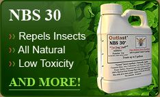 All Natural Insecticides That Use Ladybugs