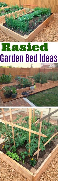 Raised Garden Bed Ideas, Raised Garden Beds, Garden Map, Container Gardening