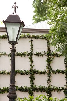 Green Walls: Trellised Vines + Espalier Trees : Centsational Girl