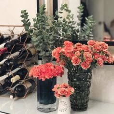 Proof that smaller can be better? @traderjoes mini carnations  Two bunches created three bouquets        #bhgflowers #thatsdarling #flashesofdelight  #mydomaine #sodomino #clementinedaily #ckstyleaccordingly #jungalowstyle #simplystyled #dsfloral #psflowerpower #aquietstyle #wipsandblooms #rsblooms #abmplantlady #flowersofinstagram #abspring #larsflowers #plantsonpink #plantsmakepeoplehappy #bringtheoutdoorsin #plantaddicts #houseplants #indoorplants #crazyplantlady