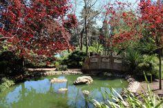 La leggenda della Dama Bianca di Stow Lake - Golden Gate Park