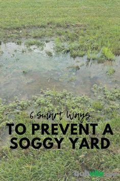 Backyard drainage - 6 Smart Ways to Prevent a Soggy Yard with Every Rain Shower Sump Pump Drainage, Drainage Ditch, Rock Drainage, Gutter Drainage, Backyard Drainage, Landscape Drainage, Patio Drainage Ideas, Landscaping Along Fence, Backyard Landscaping
