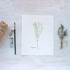 A beautiful 8 x 10 inch thyme print from my herb watercolor series printed on gorgeous paper. I painted a sprig of English thyme from my garden. I adore this herb and I used it so often in my cooking.