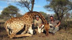 Hristo Stoichkov posa junto a una jirafa. El futbolista-cazador se defendió por las críticas y la indignación que provocaron sus fotos con animales salvajes muertos