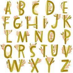 Alphabet   Perennial                                by Anke Weckmann
