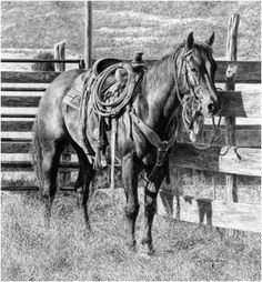 """Well Bred"" Pencil drawing by Dino Cornay Horse Drawings, Pencil Drawings, Art Drawings, Pencil Art, Pencil Sketching, Drawing Faces, Realistic Drawings, Horse Artwork, Cowboy Artwork"