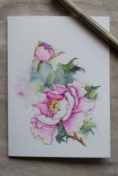 Pink Peony Watercolor Painted Card Original Art by SunsetPeonies