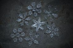 Grow borax crystals around a star shape to produce a crystal star that may be used as an ornament or decoration.