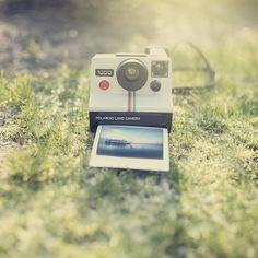 Polaroid 1000 ...la quiero ya!