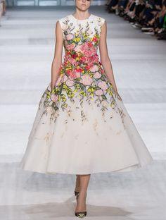 Giambattista Valli Fall 2014-2015 Couture, PFW