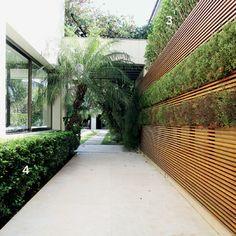 Disfarce com o painel    O muro baixo e a vista pouco atraente da casa vizinha motivaram a designer de jardim Caroline Saccab Haddad Zakka, da Secret Garden, a cobrir a parede deste corredor, em São Paulo,com um painel ripado de peroba-rosa.