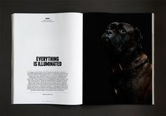 http://www.creativereview.co.uk/cr-blog/2014/july/dogs-and-culture-collide?cmpid=crnews_433925