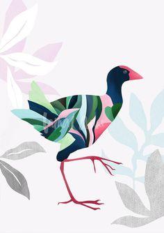 Pukeko wall art by Australian artist Lamai Anne. Bring the beautiful New Zealand outdoors into your home with these beautiful modern bird art prints. Art Sketches, Art Drawings, New Zealand Art, Bird Artwork, Guache, Kiwiana, Australian Artists, Australian Birds, Bird Illustration