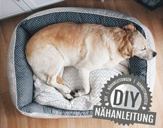 Nähanleitung Hundebett in 3 Größen mit Reißverschluss - Nähanleitungen bei Makerist